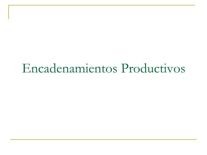 Encadenamientos Productivos