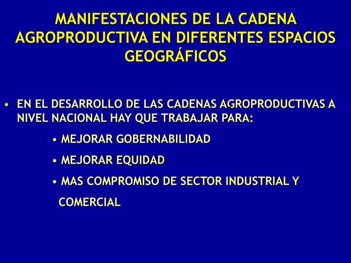 MANIFESTACIONES DE LA CADENA AGROPRODUCTIVA EN DIFERENTES ESPACIOS GEOGRÁFICOS