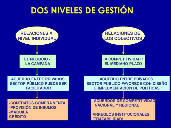 DOS NIVELES DE GESTIÓN