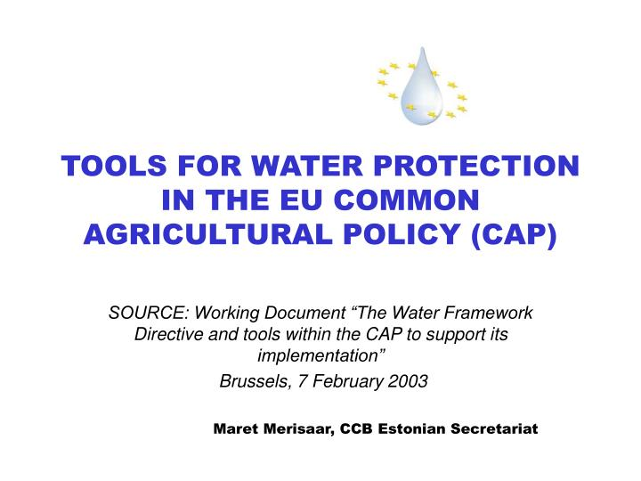 Tools for water protection in the eu common agricultural policy cap