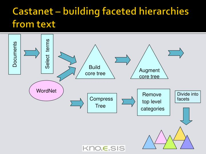 Castanet – building faceted hierarchies from text