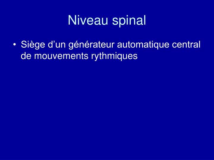 Niveau spinal