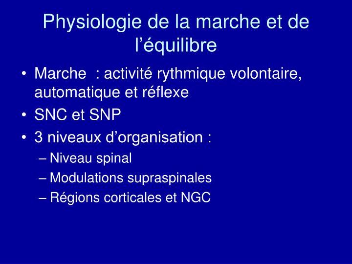 Physiologie de la marche et de l'équilibre