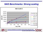 nas benchmarks strong scaling