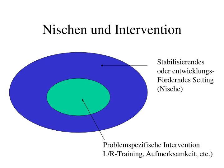 Nischen und Intervention
