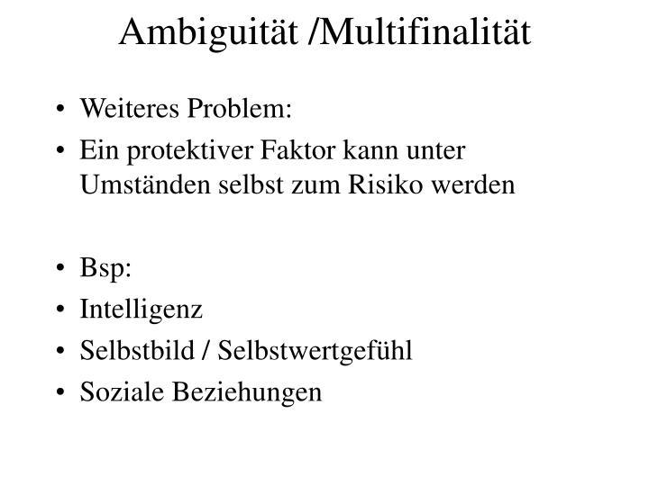Ambiguität /Multifinalität