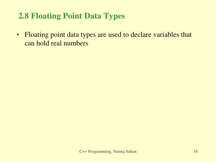 2.8 Floating Point Data Types