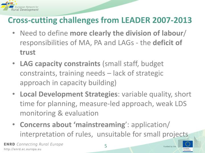 Cross-cutting challenges from LEADER 2007-2013