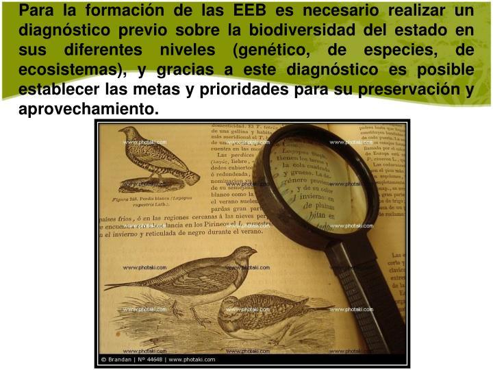 Para la formación de las EEB es necesario realizar un diagnóstico previo sobre la biodiversidad del estado en sus diferentes niveles (genético, de especies, de ecosistemas), y gracias a este diagnóstico es posible establecer las metas y prioridades para su preservación y aprovechamiento.
