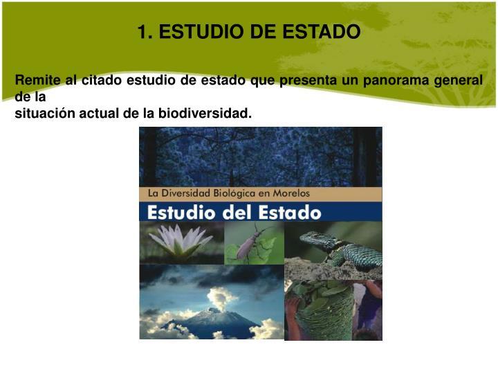 1. ESTUDIO DE ESTADO