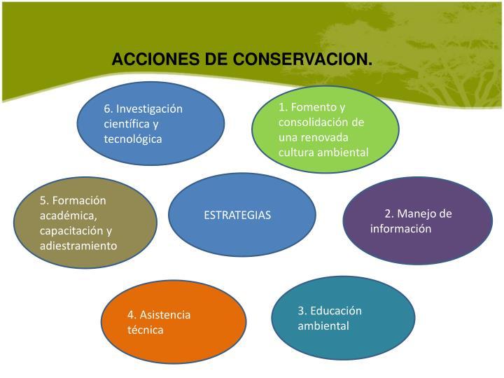ACCIONES DE CONSERVACION.