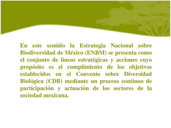 En este sentido la Estrategia Nacional sobre Biodiversidad de México (ENBM) se presenta como el conjunto de líneas estratégicas y acciones cuyo propósito es el cumplimiento de los objetivos establecidos en el Convenio sobre Diversidad Biológica (CDB) mediante un proceso continuo de participación y actuación de los sectores de la sociedad mexicana.