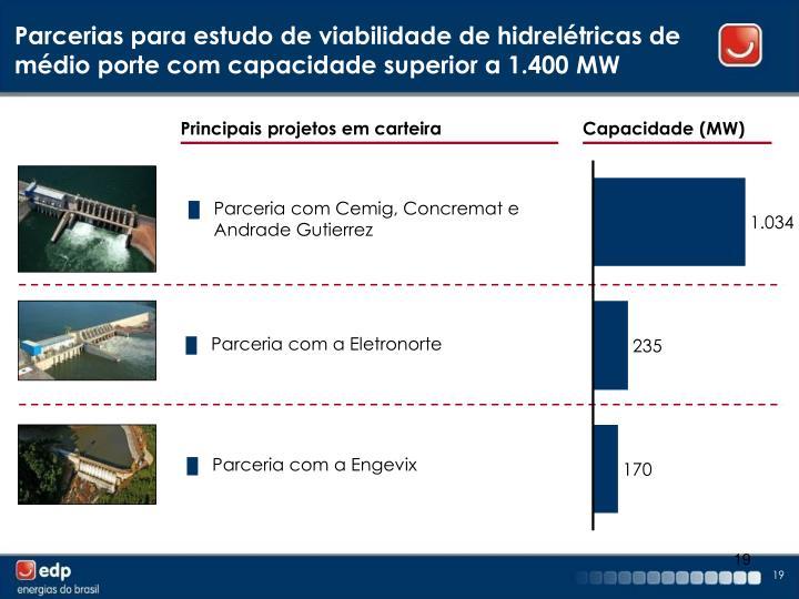 Parcerias para estudo de viabilidade de hidrelétricas de médio porte com capacidade superior a 1.400 MW