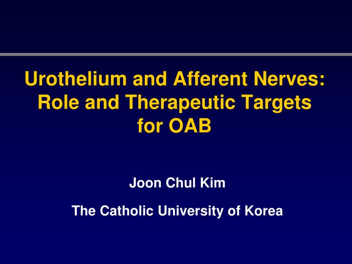 Urothelium and afferent nerves role and therapeutic targets for oab