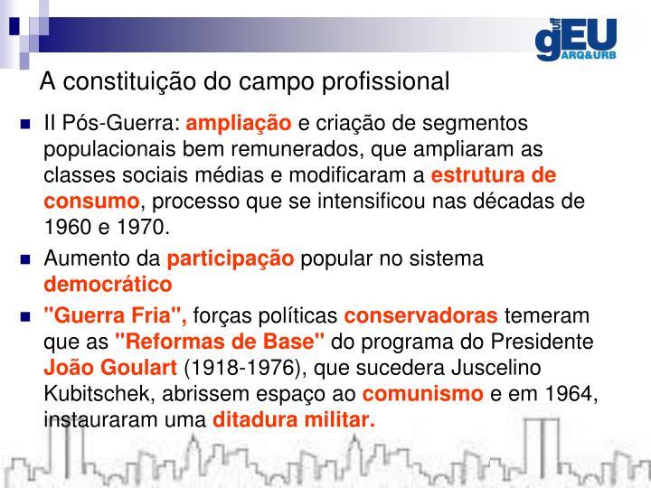 A constituição do campo profissional