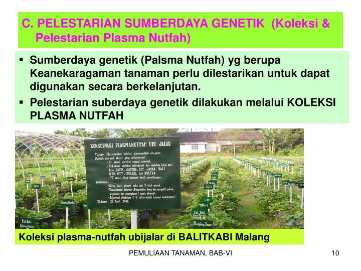 C. PELESTARIAN SUMBERDAYA GENETIK  (Koleksi & Pelestarian Plasma Nutfah)