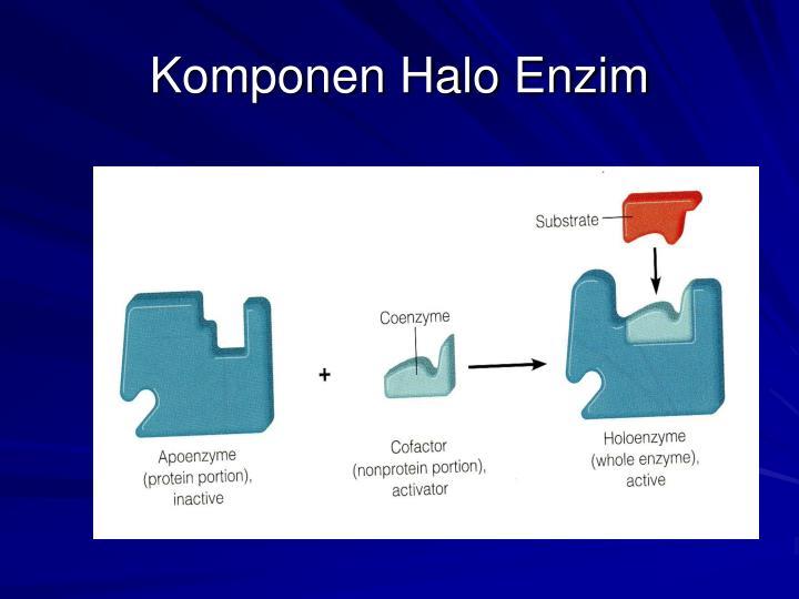 Komponen Halo Enzim
