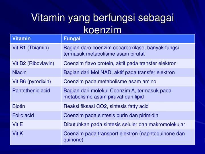 Vitamin yang berfungsi sebagai koenzim