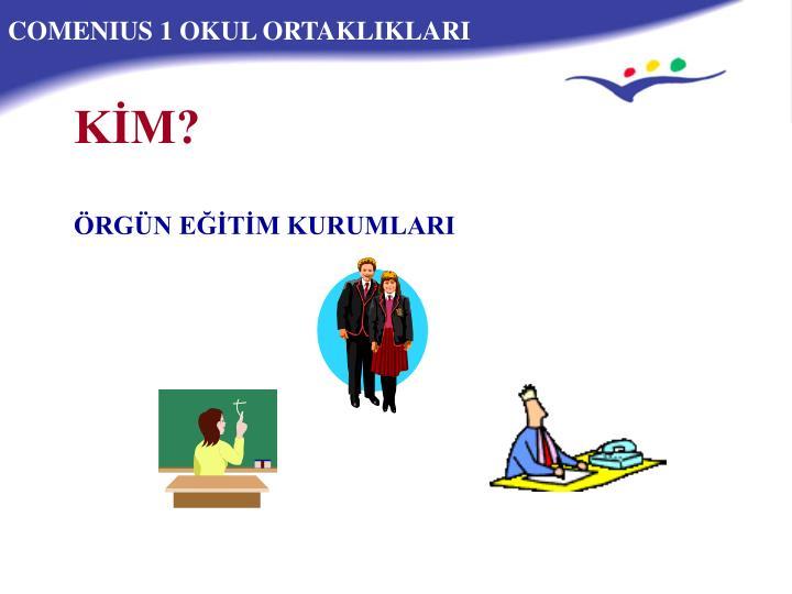 COMENIUS 1 OKUL ORTAKLIKLARI
