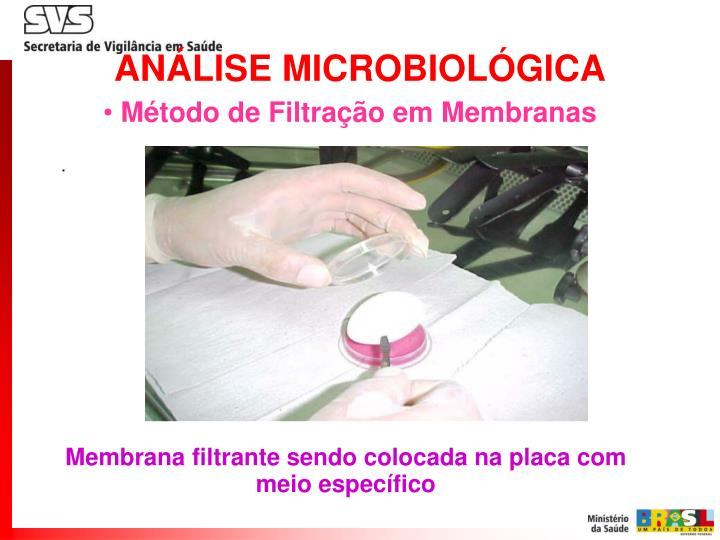 ANÁLISE MICROBIOLÓGICA
