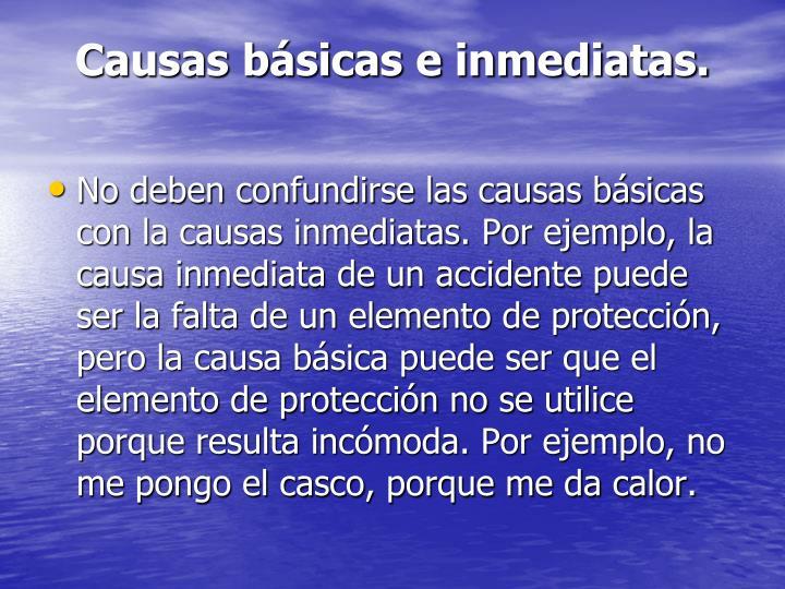 Causas básicas e inmediatas.