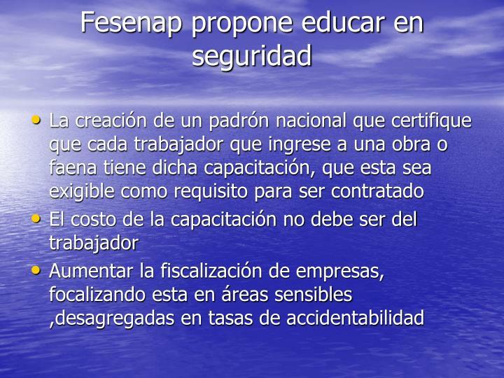 Fesenap propone educar en seguridad