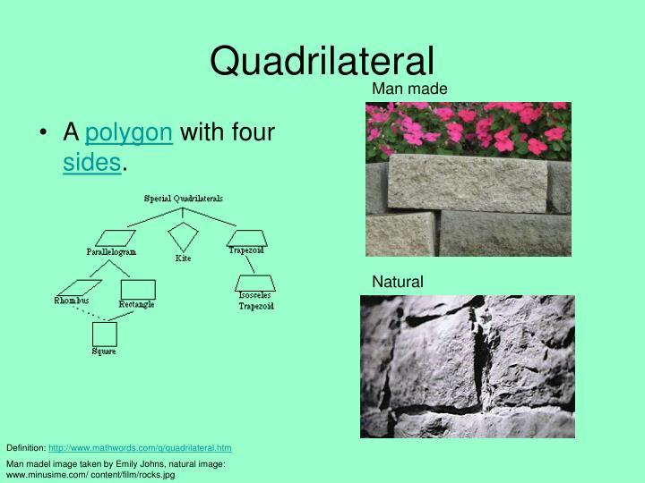 quadrilaterals in nature - photo #48