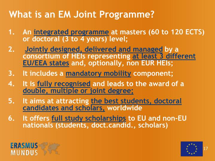 What is an EM Joint Programme?