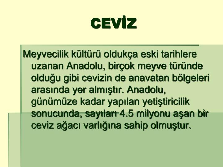CEVİZ