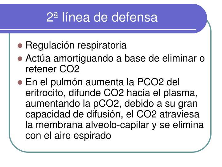 2ª línea de defensa