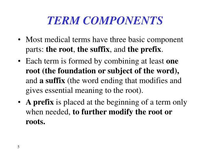 TERM COMPONENTS