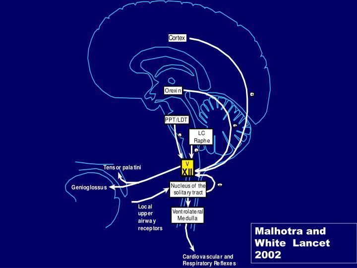 Malhotra and White  Lancet 2002