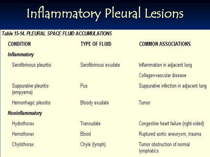 Inflammatory Pleural Lesions