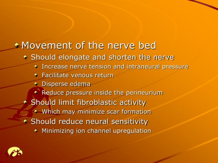 Movement of the nerve bed
