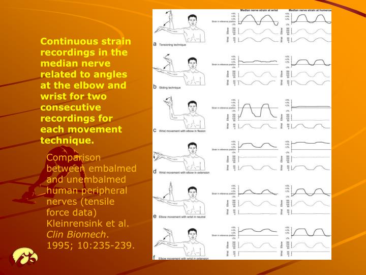 Continuous strain recordings in the median nerve related to angles at the elbow and wrist for two consecutive recordings for each movement technique.