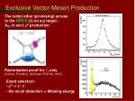 exclusive vector meson production