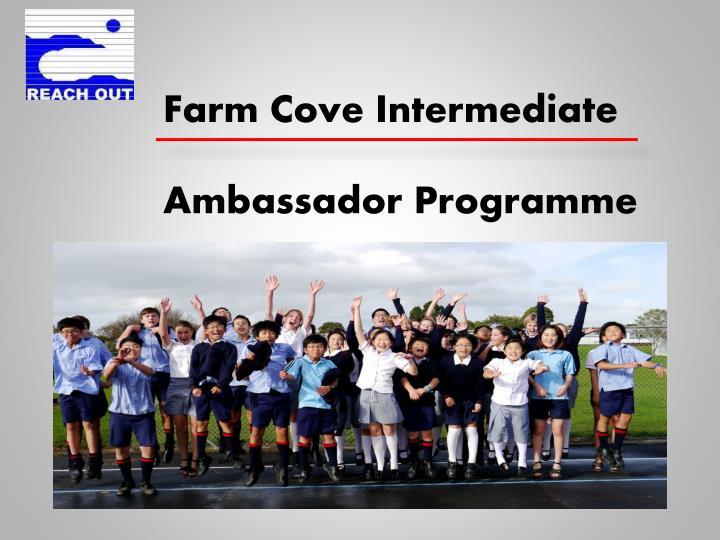 Farm Cove Intermediate
