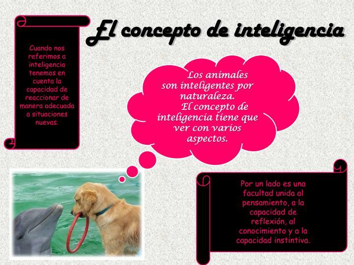 El concepto de inteligencia