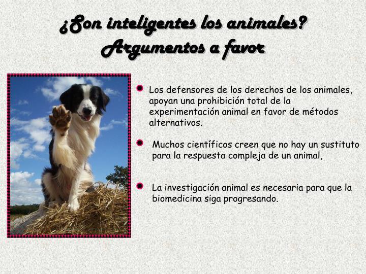 ¿Son inteligentes los animales?