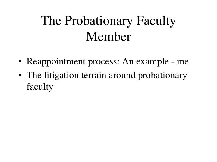 The Probationary Faculty Member