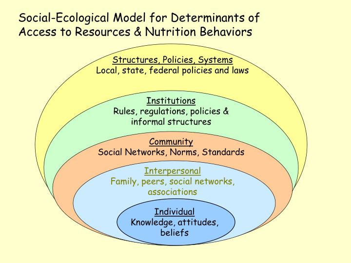 Social-Ecological Model for Determinants of