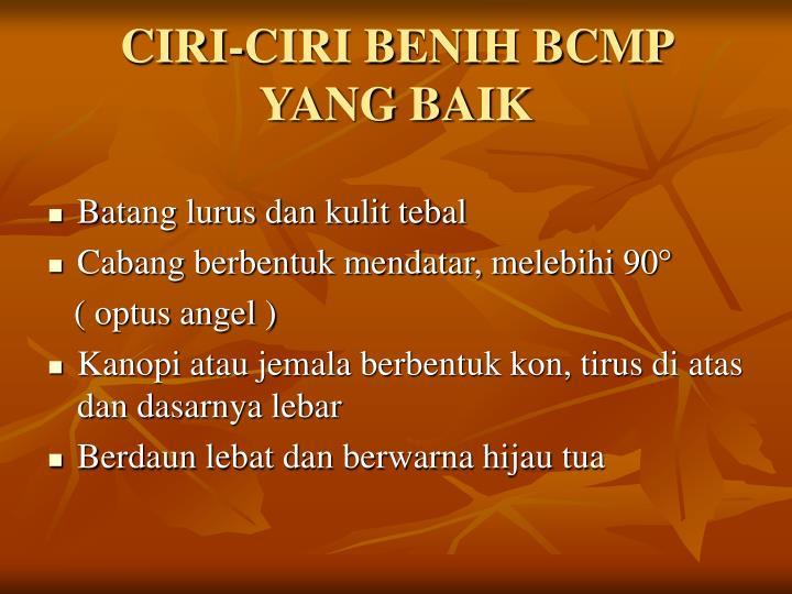 CIRI-CIRI BENIH BCMP YANG BAIK