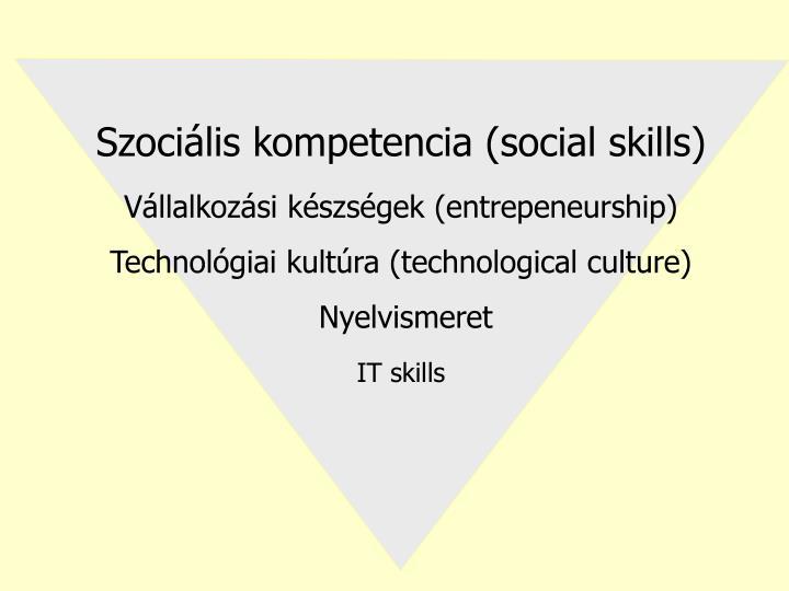 Szociális kompetencia (social skills)