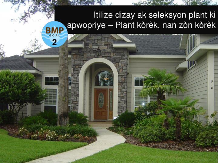 Itilize dizay ak seleksyon plant ki apwopriye – Plant kòrèk, nan zòn kòrèk