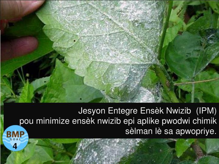 Jesyon Entegre Ensèk Nwizib