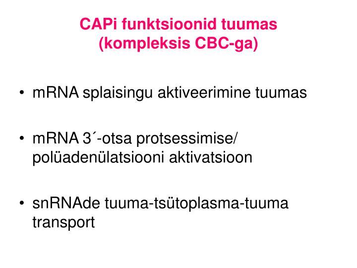 CAPi funktsioonid tuumas