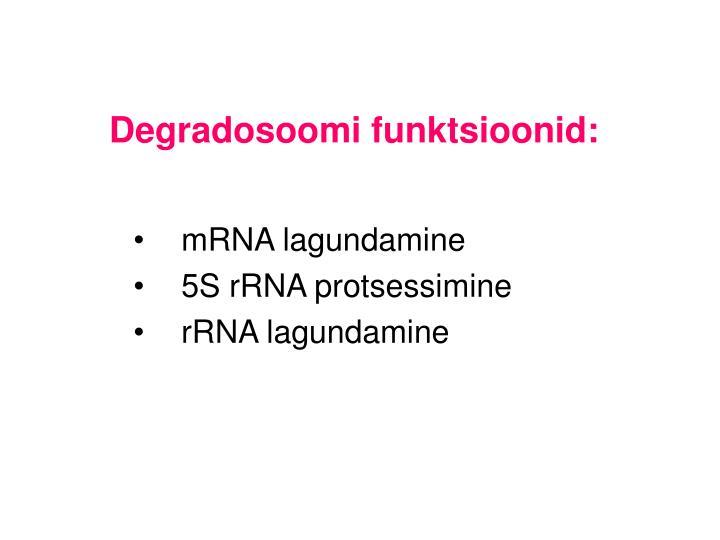 Degradosoomi funktsioonid:
