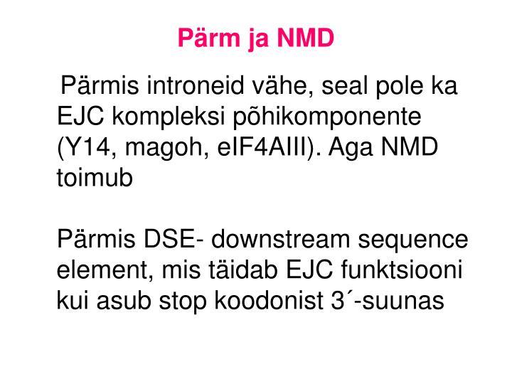 Pärm ja NMD