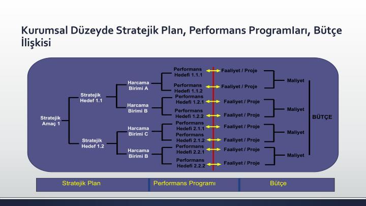 Kurumsal Düzeyde Stratejik Plan, Performans