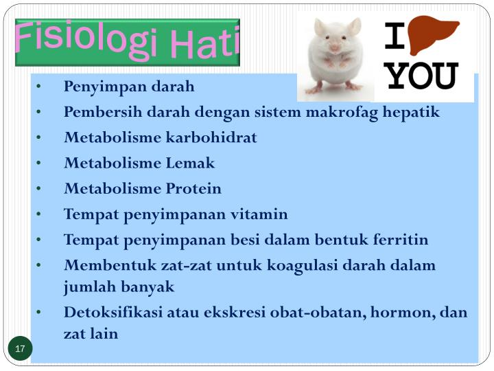 Fisiologi Hati